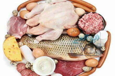 فروش مرغ صادراتی - 41